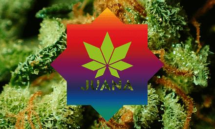JUANA | Proyecto transmedia y revista no convencional